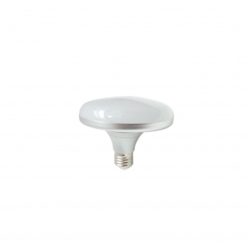LED bulb 12W screw E27 light b